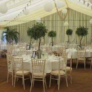 A wedding reception, inside a white marquee with small trees on each table